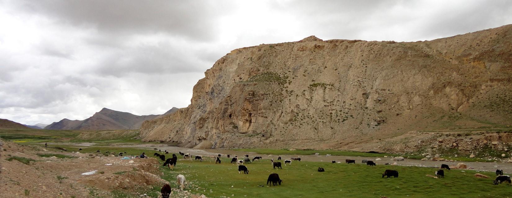 Viaje a Mustang